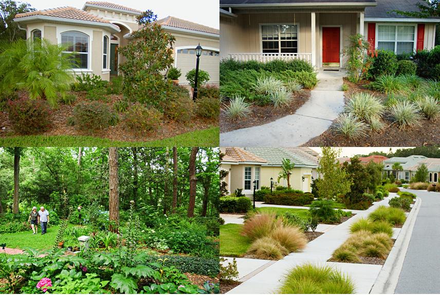 Back Yard Garden Stuff on Pinterest Front Yards