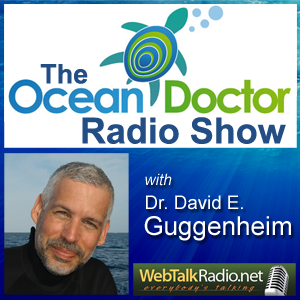 The Ocean Doctor on WebTalkRadio.net