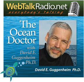 The Ocean Doctor Radio Show on WebTalkRadio.net