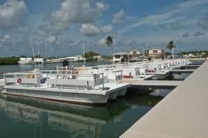 Seacamp's fleet of flattop boats in the harbor