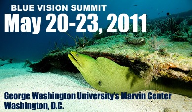 Blue Vision Summit 2011