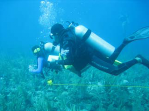Coral Reef CSI Training - Belize (Photo courtesy of CORAL)