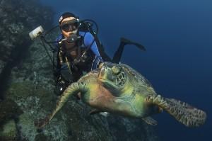 National Geographic Explorer in Residence, Dr. Enric Sala, exploring the world's last remaining pristine seas (Photo: Octavio Aburto)