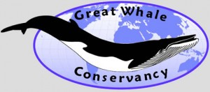 The Great Whale Conservancy