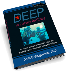 Deep in Enemy Territory by David E. Guggenheim