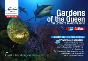 DEMA-Gardens-of-the-Queen