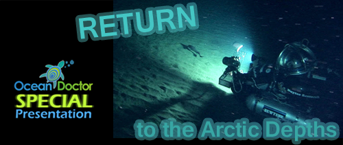 Return to Arctic Depths