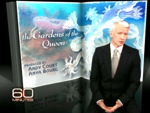 "60 MINUTES' ""Gardens of the Queen"" Named as Finalist in BLUE Ocean Film Festival 2012"