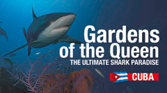 Cuba's Gardens of the Queen
