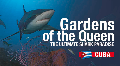 Cuba's Gardens of the Queen