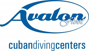 Avalon Cuban Diving Centers