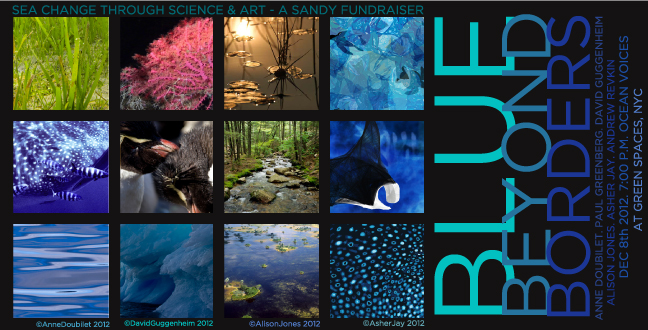 Blue Beyond Borders - A Hurricane Sandy Fundraiser
