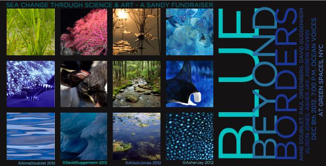 Blue Beyond Borders - A Hurricane Sandy Fundraiser