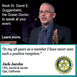 "Book Dr. David E. Guggenheim, the ""Ocean Doctor,"" to speak at your next event!"