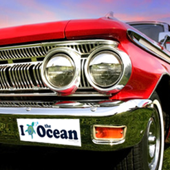 Vintage Car with Ocean Doctor Bumper Sticker
