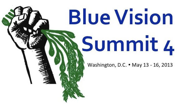 blue-vision-summit-2013