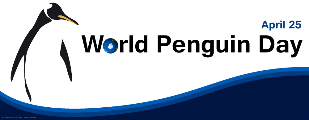 World Penguin Day 2013