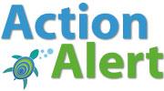 Action Alert - Ocean Doctor