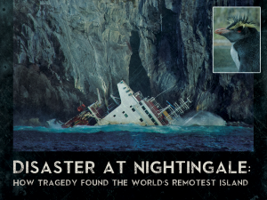 Disaster at Nightingale - Movie