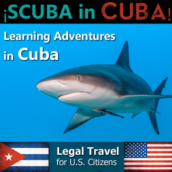 Dive in Cuba Legally!