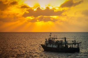 CIM's research vessel, Felipe Poey, anchored at sunset in Cuba's Gardens of the Queen (Photo: D. Guggenheim)