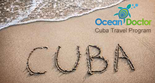 Ocean Doctor's Cuba Travel Program