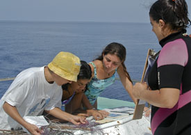 Training the Next Generation of Marine Scientists: Our joint research is serving as the basis of Master's and Doctoral research for dozens of students at University of Havana's Center for Marine Research, the only institution in Cuba where marine scientists are accredited