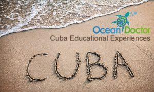 Cuba Educational Experiences - Ocean Doctor