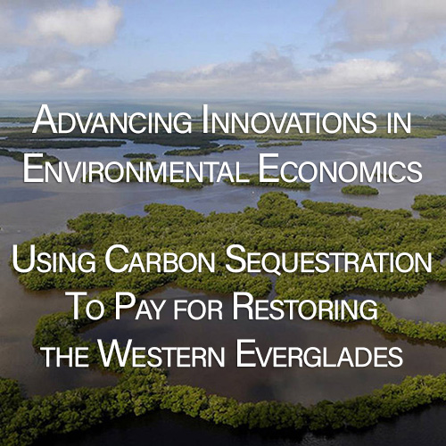 Restoring Western Everglades