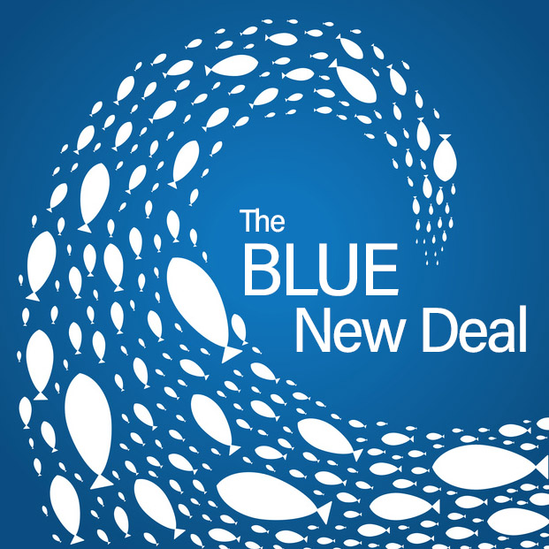 Blue New Deal